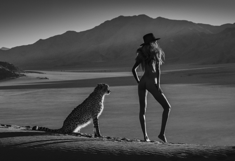 African Tails – David Yarrow