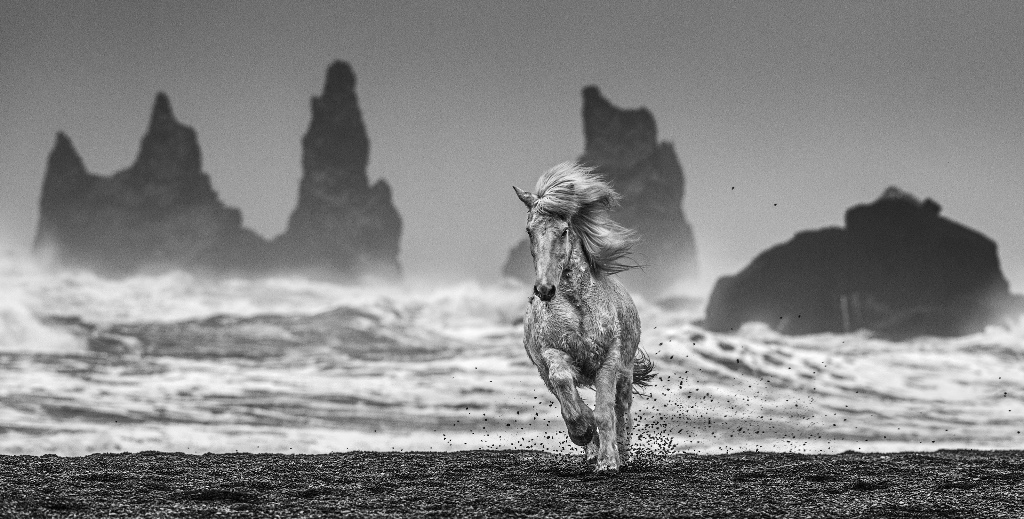 White Horses – David Yarrow