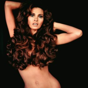 Raquel Welch Hair