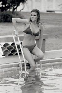 Raquel Welch Summer Dip