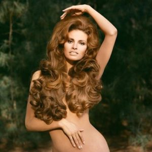 Raquel Welch Hair 3