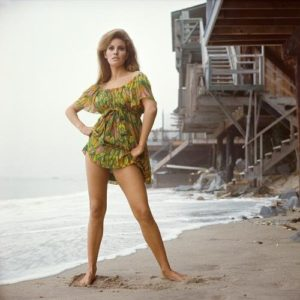 Raquel Welch Green Smock Dress