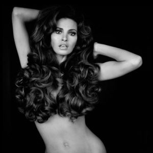 Raquel Welch Hair 2